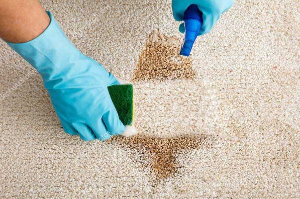 Как чистят ковры в химчистке